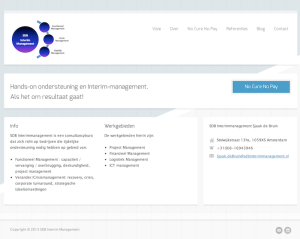 SDB Interim Management website
